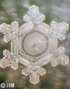 水の情報記憶「ありがとう」の結晶写真